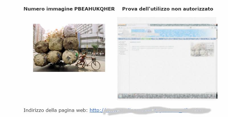 picrights email danni